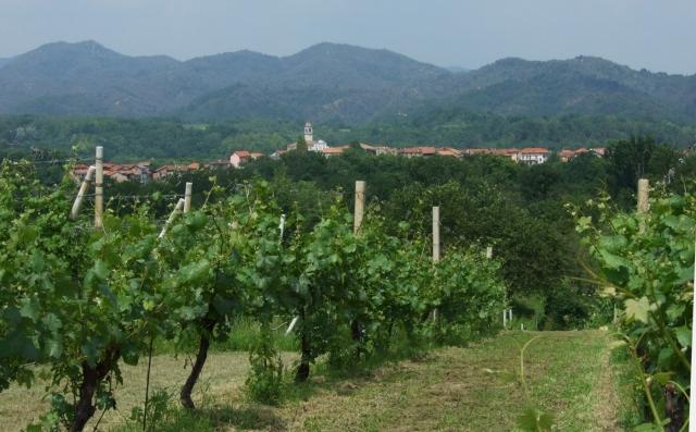 Castelletto_Villa